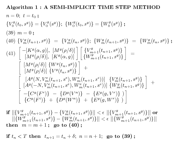 Time solvers of the Non Linear Schrödinger Equation